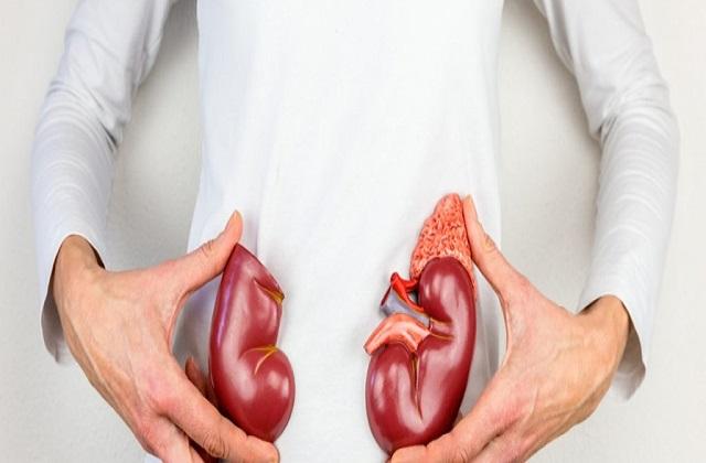 Health Tips: ਕਿਡਨੀ ਨੂੰ ਹੈਲਥੀ ਰੱਖਣ ਲਈ ਡੇਲੀ ਰੁਟੀਨ 'ਚ ਕਰੋ ਇਹ ਬਦਲਾਅ